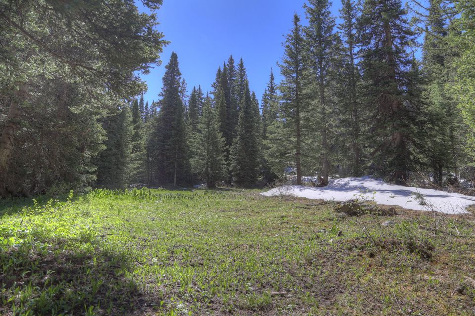 Additional photo for property listing at tbd FSR 57 tbd FSR 57 Rico, Colorado,81332 Verenigde Staten