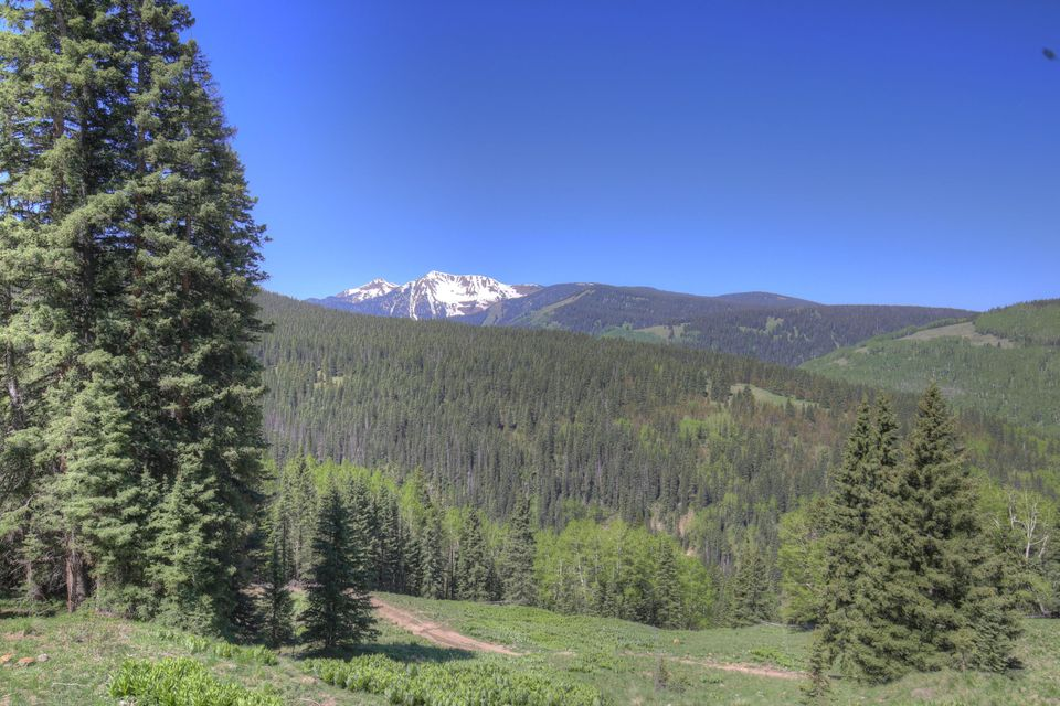 Additional photo for property listing at tbd FSR 57 tbd FSR 57 Rico, Colorado,81332 Amerika Birleşik Devletleri