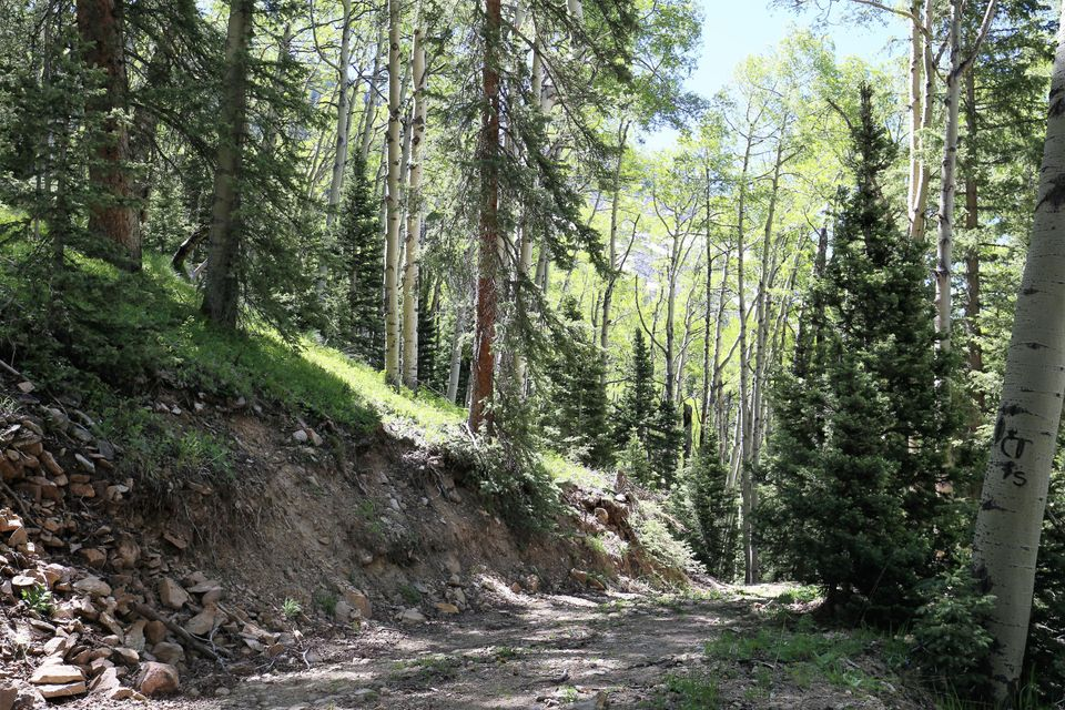 Additional photo for property listing at tbd FSR 57  Rico, Colorado,81332 United States