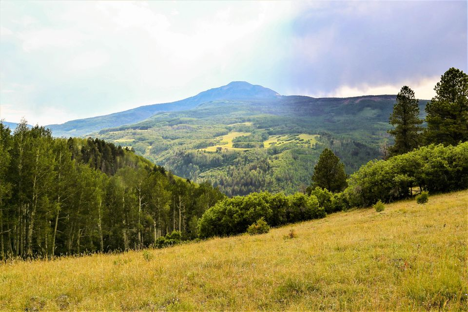 Additional photo for property listing at TBD Elk Creek A3  Placerville, Colorado,81430 Stati Uniti