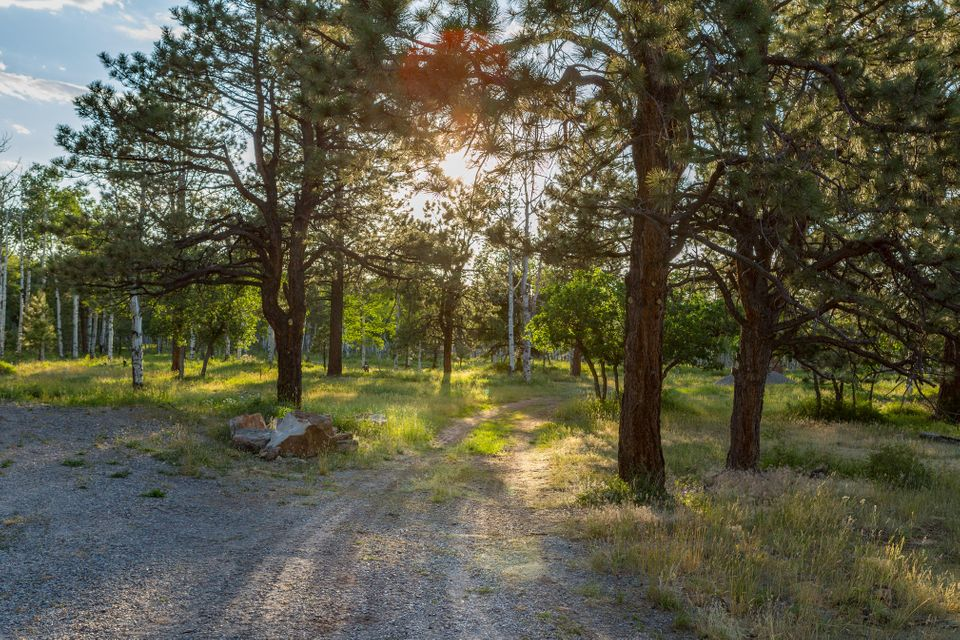 Additional photo for property listing at 6670 McKenzie Springs Road 6670 McKenzie Springs Road Placerville, Colorado,81430 United States
