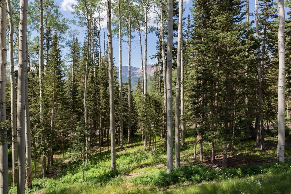 Additional photo for property listing at 15 High Noon Lane 15 High Noon Lane Telluride, Colorado,81435 Stati Uniti