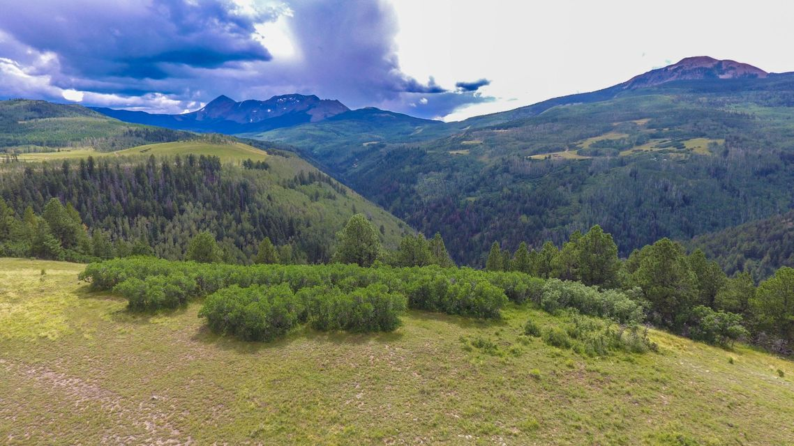 Additional photo for property listing at TBD Elk Creek A3 TBD Elk Creek A3 Placerville, Colorado,81430 Amerika Birleşik Devletleri