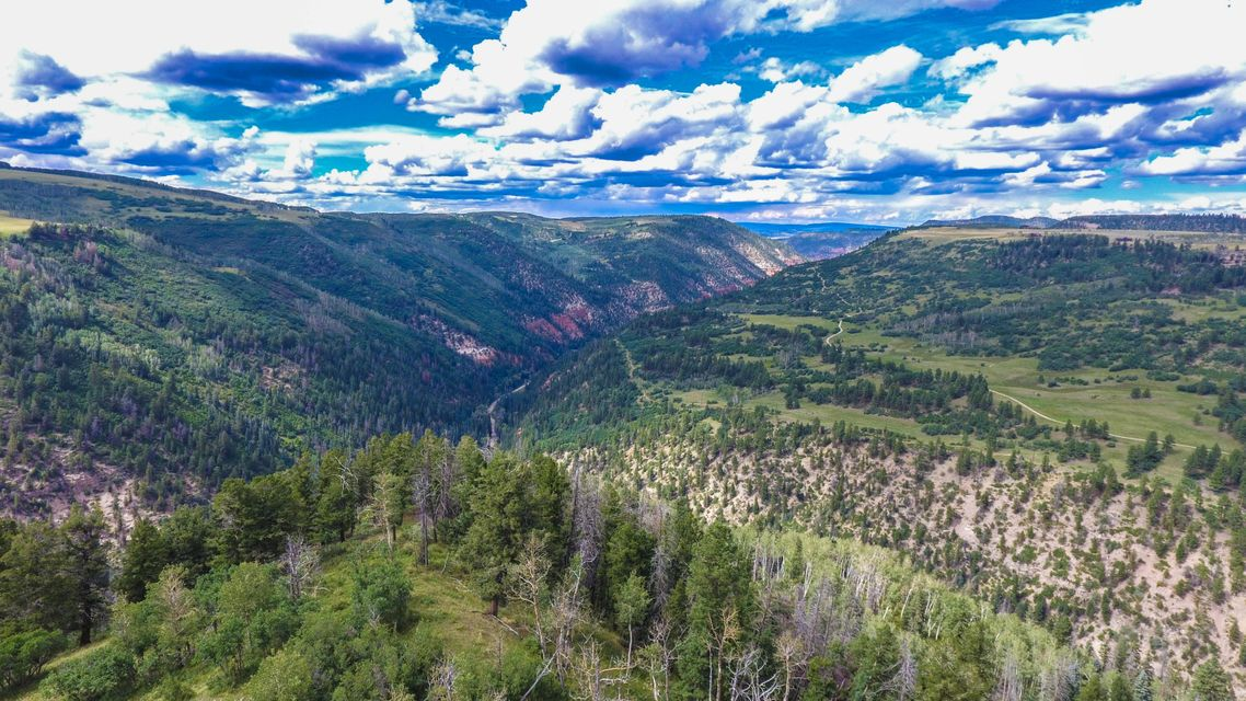 Additional photo for property listing at TBD Elk Creek A3 TBD Elk Creek A3 Placerville, Colorado,81430 United States