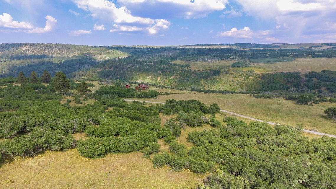 Additional photo for property listing at 390 Penninsula Drive 390 Penninsula Drive Placerville, Colorado,81430 Usa