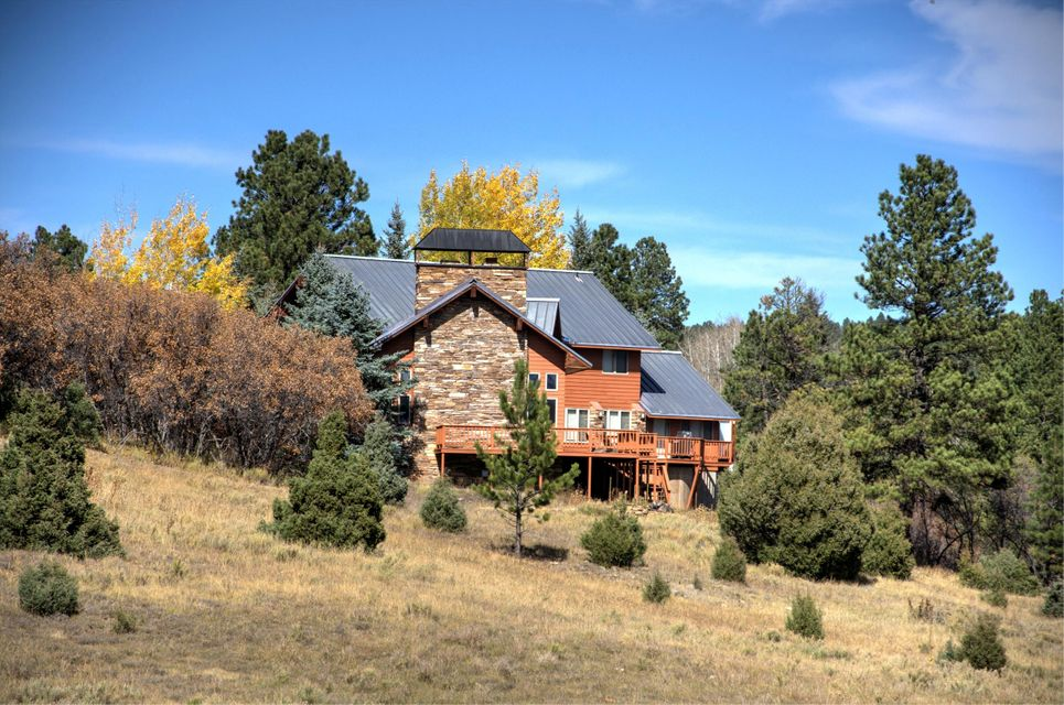 Casa para uma família para Venda às 535 Bluff View Drive 535 Bluff View Drive Placerville, Colorado,81430 Estados Unidos