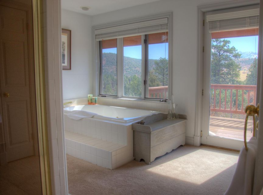 Additional photo for property listing at 535 Bluff View Drive 535 Bluff View Drive Placerville, 콜로라도,81430 미국