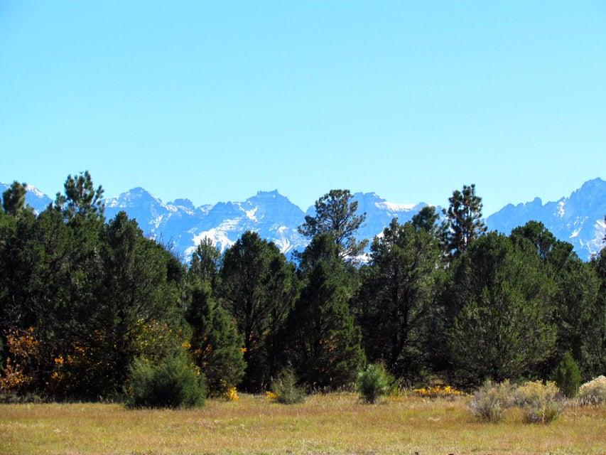 234  Wisteria Drive, Montrose Colorado