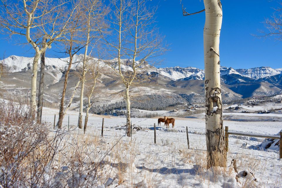 Additional photo for property listing at TBD Wagner Way TBD Wagner Way Telluride, Colorado,81435 Estados Unidos