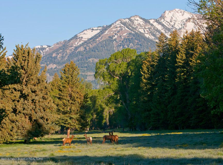 Additional photo for property listing at TRACT 3 SPRING GULCH RANCH Jackson, WY TRACT 3 SPRING GULCH RANCH Jackson, Wyoming,83001 Hoa Kỳ