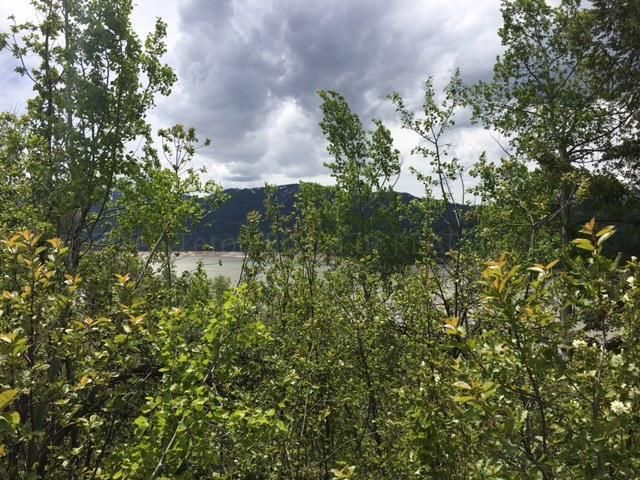 TBD LAKEVIEW DR, Irwin, ID 83428