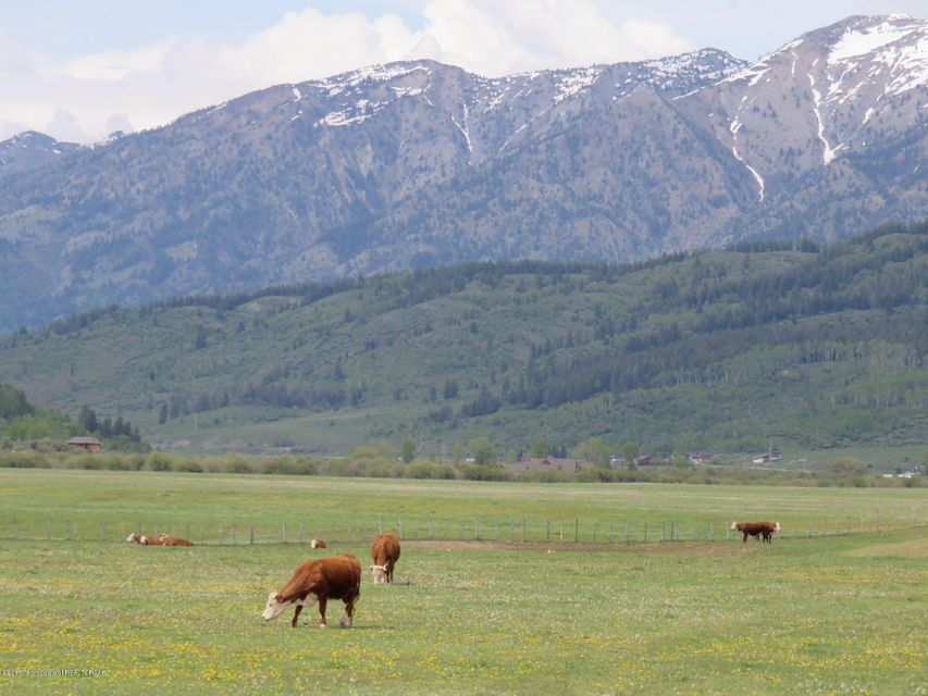 Additional photo for property listing at RISING TROUT RANCH Alpine, WY RISING TROUT RANCH Alpine, 懷俄明州,83128 美國