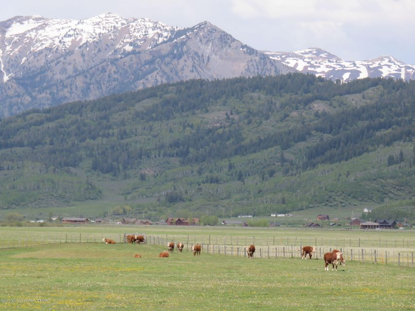 Additional photo for property listing at RISING TROUT RANCH Alpine, WY RISING TROUT RANCH Alpine, Вайоминг,83128 Соединенные Штаты
