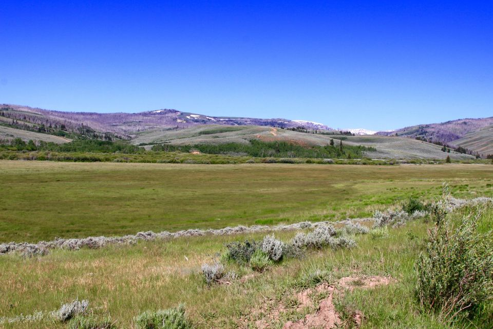Additional photo for property listing at 342 S PINEY FISH CR Big Piney, WY 342 S PINEY FISH CR Big Piney, 怀俄明州,83113 美国