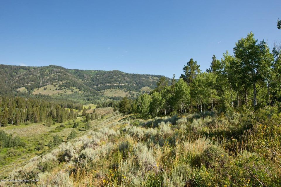 Additional photo for property listing at 875 CAMERON RD Wilson, WY 875 CAMERON RD 威尔逊, 怀俄明州,83014 美国
