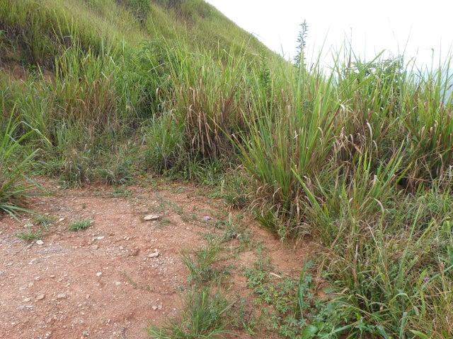 Terreno en Venta en Caicaguana