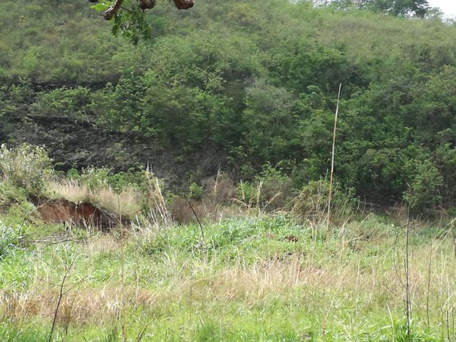 Terreno En Venta En Municipio Naguanagua En Mañongo - Código: 17-6087