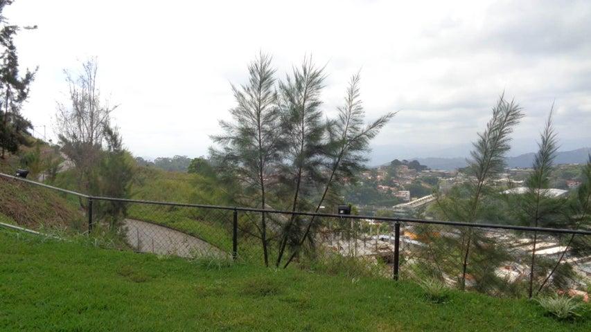Terreno en Venta en Municipio Carrizal