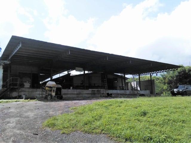 Galpon - Deposito En Venta En Municipio Libertador En Parroquia Tocuyito - Código: 17-8434