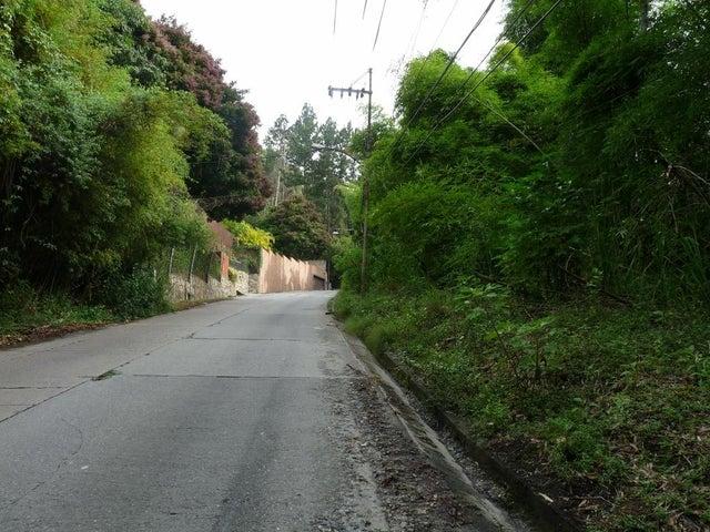 Terreno En Venta En Caracas - Las Marias Código FLEX: 17-10077 No.6