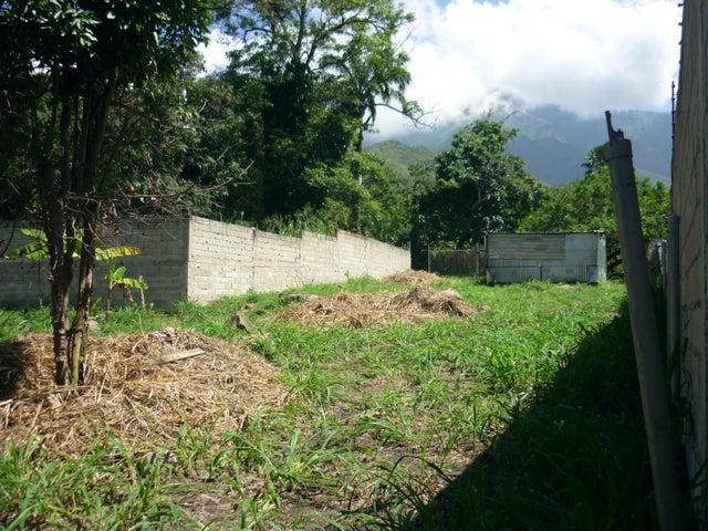Terreno En Venta En Maracay - El Limon Código FLEX: 18-11696 No.10