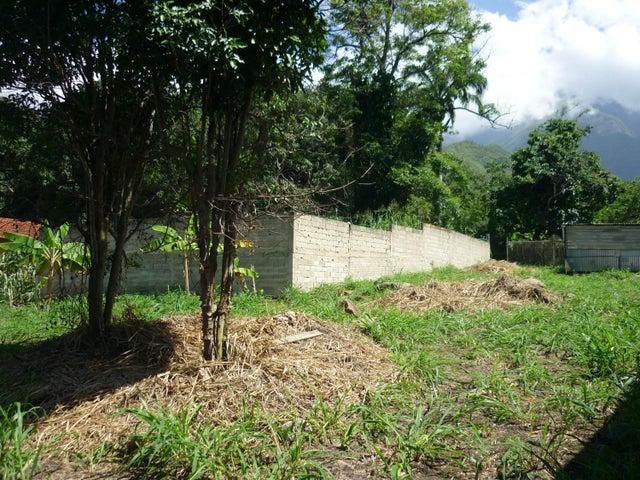 Terreno En Venta En Maracay - El Limon Código FLEX: 18-11696 No.12