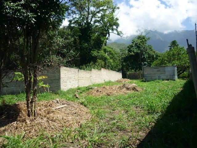 Terreno En Venta En Maracay - El Limon Código FLEX: 18-11696 No.13
