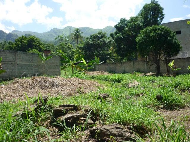 Terreno En Venta En Maracay - El Limon Código FLEX: 18-11696 No.17