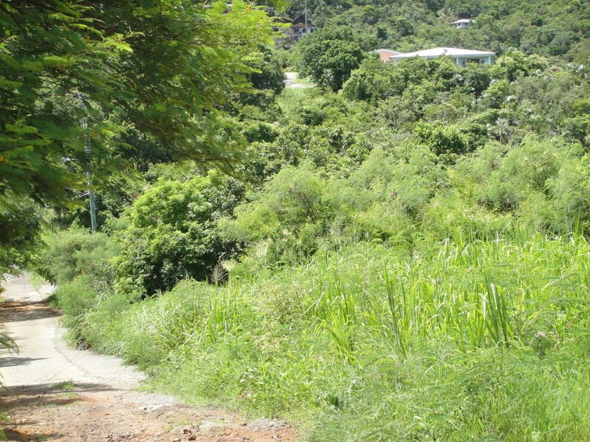 Additional photo for property listing at 2E-51-10 Caret Bay LNS 2E-51-10 Caret Bay LNS St Thomas, Virgin Islands 00802 Isles Vierges Américaines