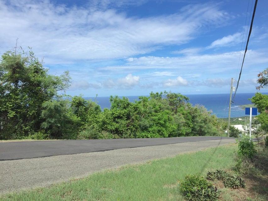 土地,用地 为 销售 在 70 Concordia NB 70 Concordia NB 圣克洛伊岛, 维京群岛 00820 美属维尔京群岛