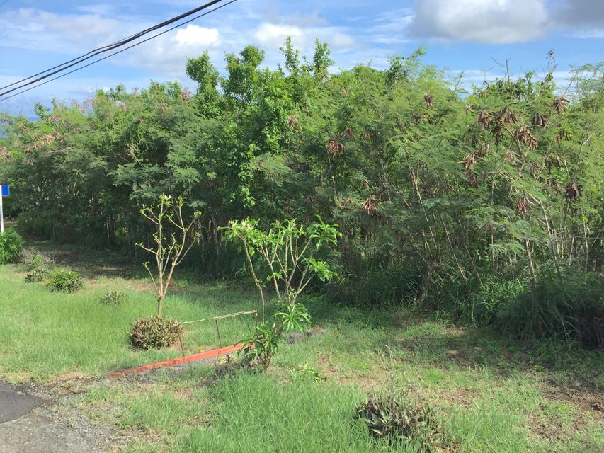Additional photo for property listing at 70 Concordia NB 70 Concordia NB 圣克洛伊岛, 维京群岛 00820 美属维尔京群岛
