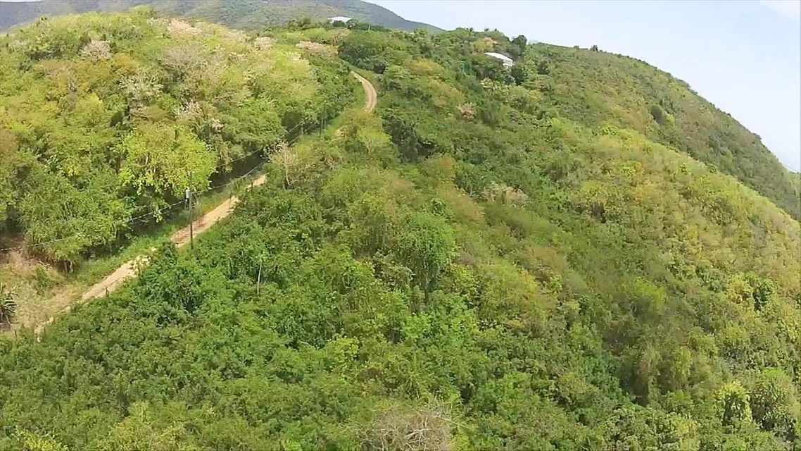 Additional photo for property listing at 118 + Little La Grange WE 118 + Little La Grange WE St Croix, Virgin Islands 00840 Isles Vierges Américaines