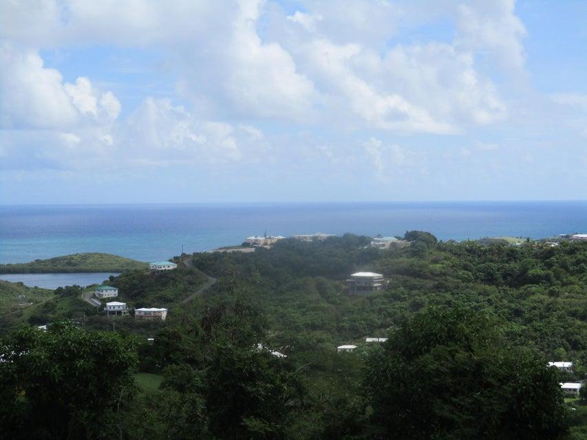 Земля для того Продажа на 64 A Mt. Welcome EA 64 A Mt. Welcome EA St Croix, Virgin Islands 00820 Виргинские Острова