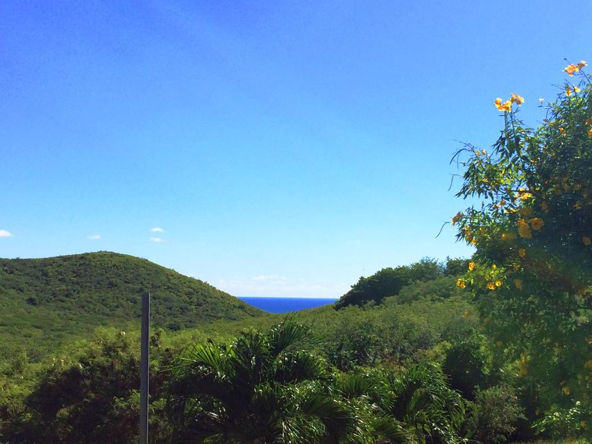 Land for Sale at 304 Union & Mt. Washington EA 304 Union & Mt. Washington EA St Croix, Virgin Islands 00820 United States Virgin Islands