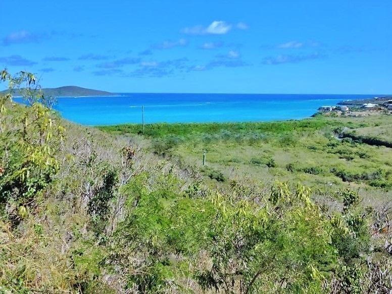 土地,用地 为 销售 在 Rem 29 Green Cay EA Rem 29 Green Cay EA 圣克洛伊岛, 维京群岛 00820 美属维尔京群岛