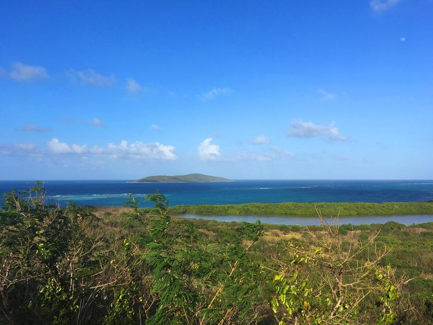 Land for Sale at 111 Green Cay EA 111 Green Cay EA St Croix, Virgin Islands 00820 United States Virgin Islands