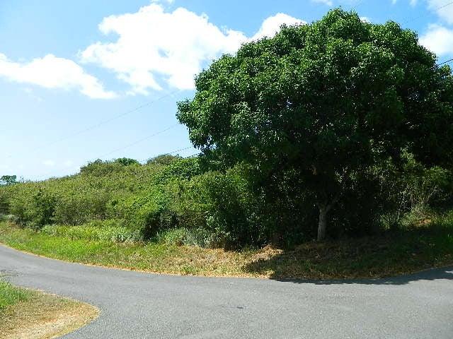 Land for Sale at 78 Anna's Hope EA 78 Anna's Hope EA St Croix, Virgin Islands 00820 United States Virgin Islands