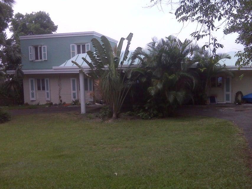 多户住宅 为 出租 在 24A Mafolie GNS 圣托马斯, 维京群岛 00802 美属维尔京群岛