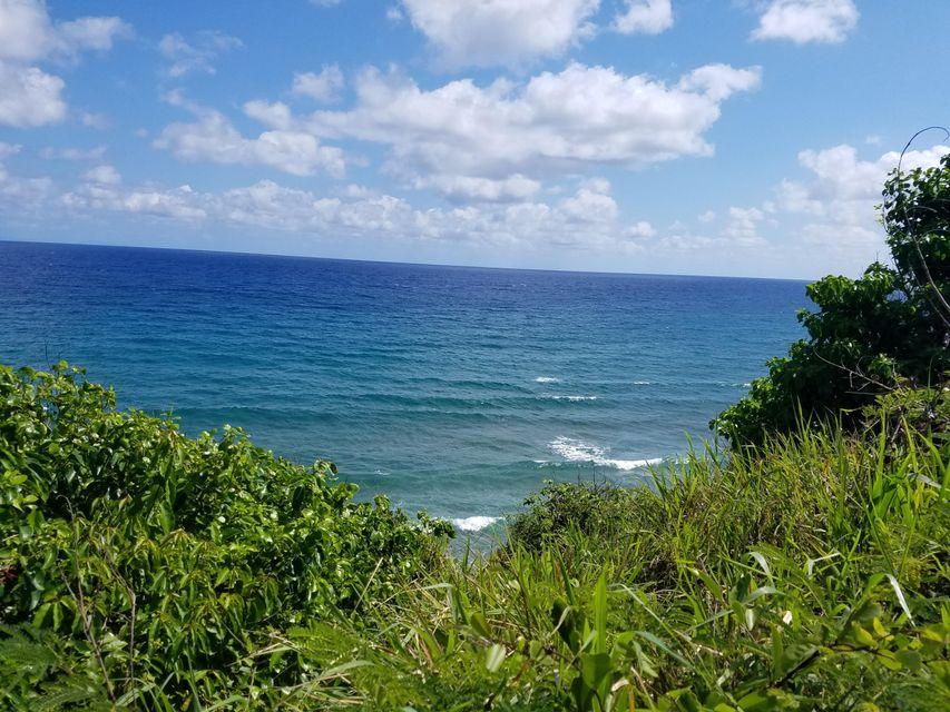 Land for Sale at 58-A Concordia NB St Croix, Virgin Islands 00820 United States Virgin Islands