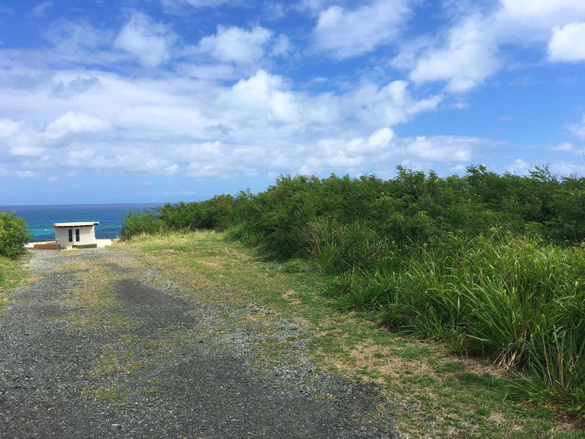 Additional photo for property listing at 238 Cotton Valley EB 238 Cotton Valley EB St Croix, Virgin Islands 00820 Виргинские Острова