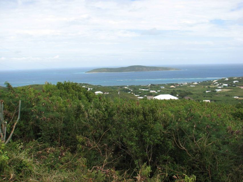 Land for Sale at 100 Hope & Carton Hill EB 100 Hope & Carton Hill EB St Croix, Virgin Islands 00820 United States Virgin Islands
