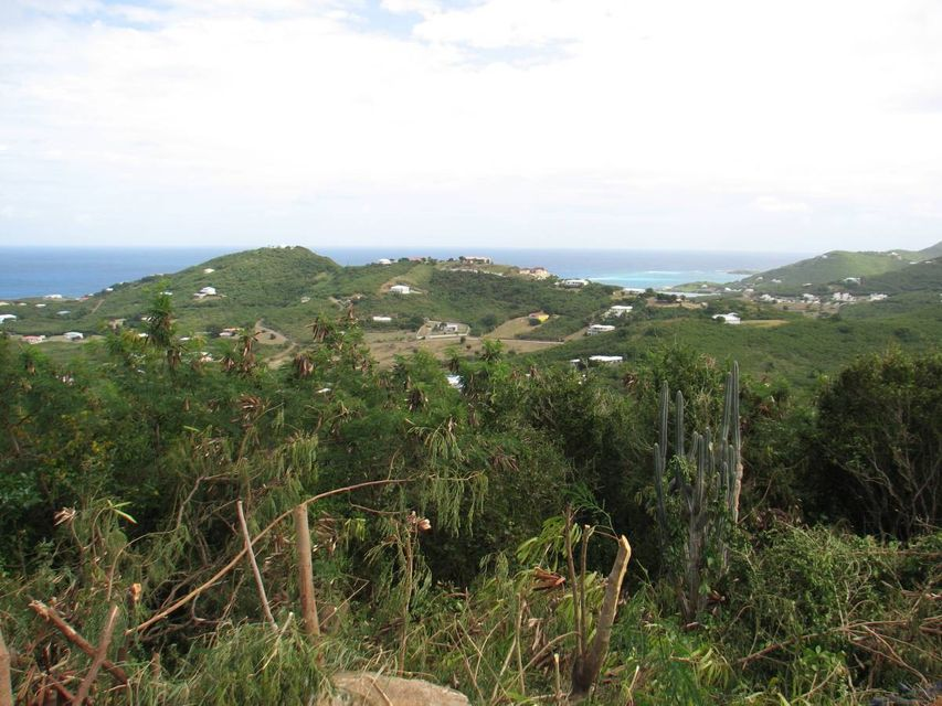 Additional photo for property listing at 100 Hope & Carton Hill EB 100 Hope & Carton Hill EB St Croix, Virgin Islands 00820 Виргинские Острова