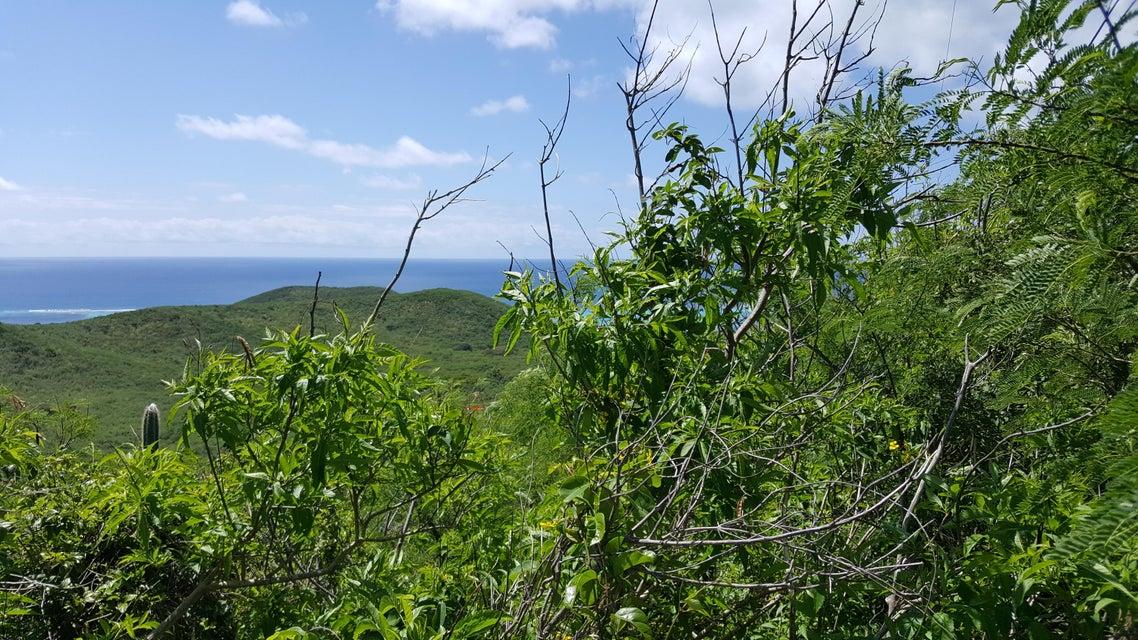 Land for Sale at 321& 321A Union & Mt. Washington EA St Croix, Virgin Islands United States Virgin Islands