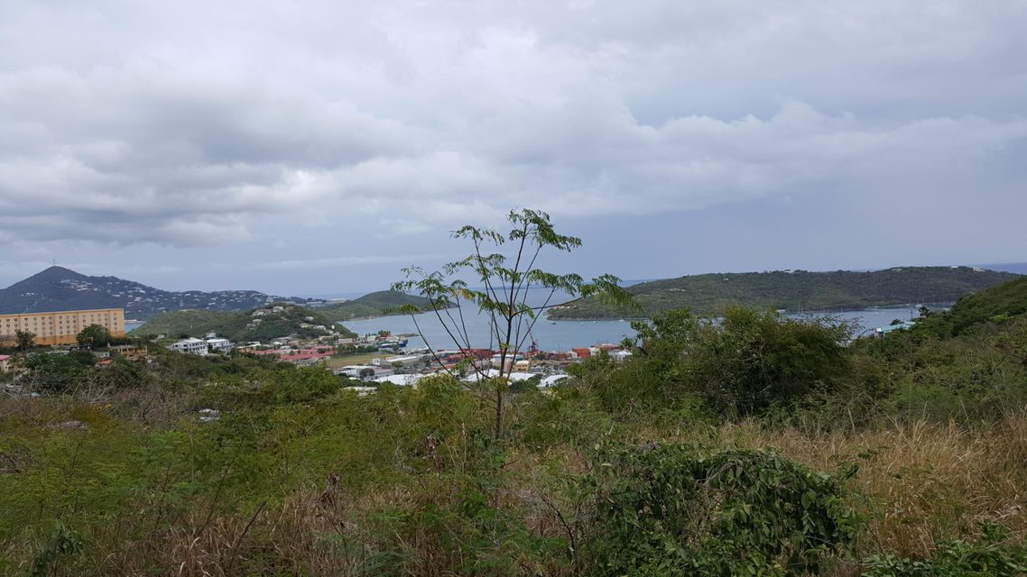 Land for Sale at 41 Rem. Contant SS 41 Rem. Contant SS St Thomas, Virgin Islands 00802 United States Virgin Islands