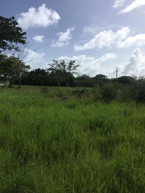 Additional photo for property listing at 41-N Whim (Two Williams) WE 41-N Whim (Two Williams) WE St Croix, Virgin Islands 00840 Виргинские Острова