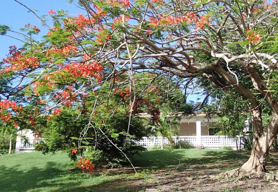 Maison unifamiliale pour l à louer à 171 La Reine KI St Croix, Virgin Islands 00820 Isles Vierges Américaines