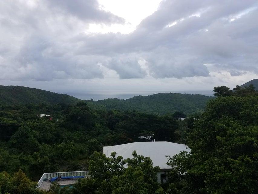 Casa Unifamiliar por un Alquiler en 16 Hard Labor PR St Croix, Virgin Islands 00850 Islas Virgenes Ee.Uu.