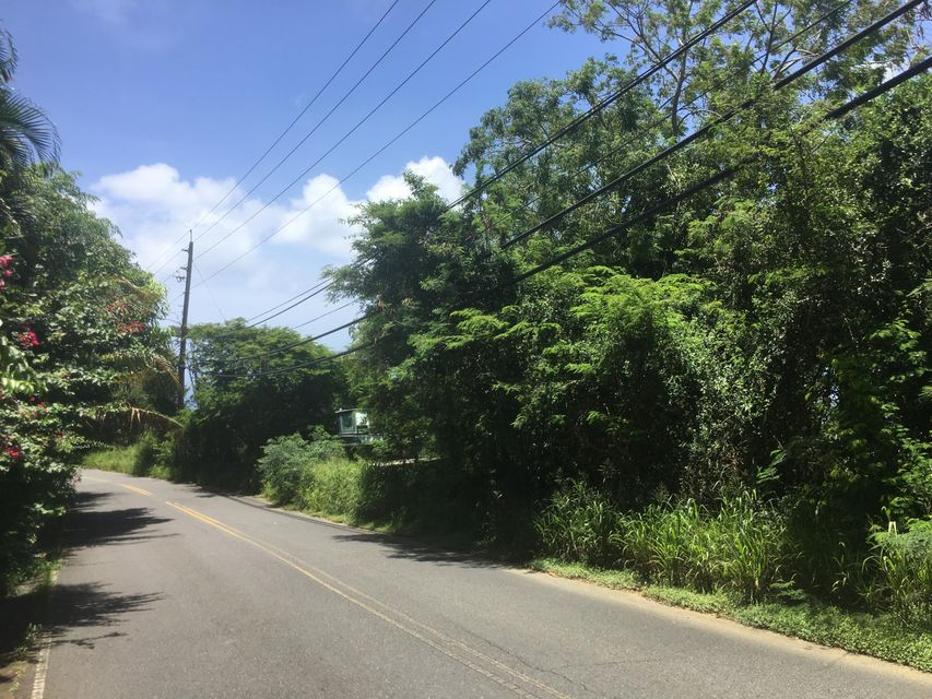 Additional photo for property listing at 55B-3 Solberg LNS 55B-3 Solberg LNS St Thomas, Virgin Islands 00802 Isles Vierges Américaines