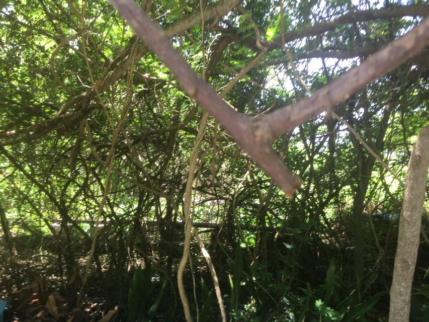 Additional photo for property listing at 55B-3 Solberg LNS 55B-3 Solberg LNS St Thomas, Virgin Islands 00802 United States Virgin Islands