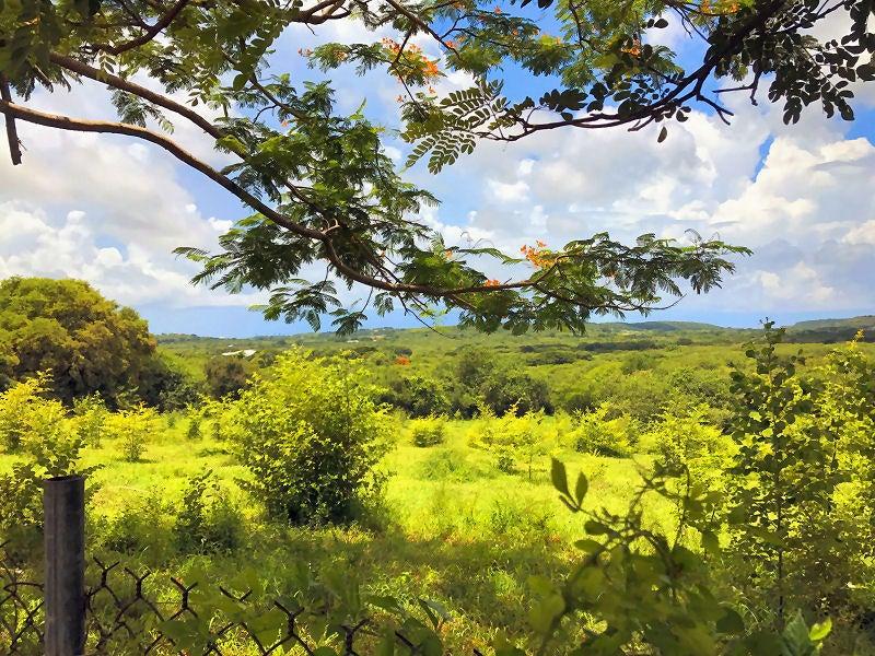 Land for Sale at 12 and 13 Mon Bijou KI 12 and 13 Mon Bijou KI St Croix, Virgin Islands 00850 United States Virgin Islands